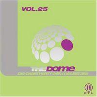 Cover  - The Dome Vol. 25