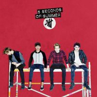Cover 5 Seconds Of Summer - Amnesia