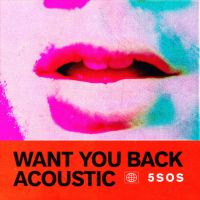 Cover 5 Seconds Of Summer - Want You Back