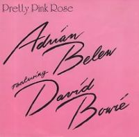 Cover Adrian Belew feat. David Bowie - Pretty Pink Rose