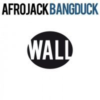 Cover Afrojack - Bangduck