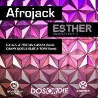 Cover Afrojack - Esther
