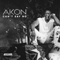 Cover Akon - Can't Say No
