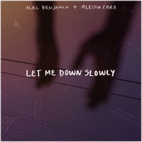 Cover Alec Benjamin feat. Alessia Cara - Let Me Down Slowly