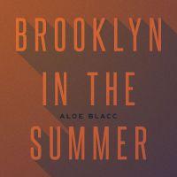 Cover Aloe Blacc - Brooklyn In The Summer