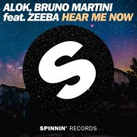 Cover Alok & Bruno Martini feat. Zeeba - Hear Me Now