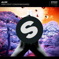 Cover Alok feat. Conor Maynard - Pray