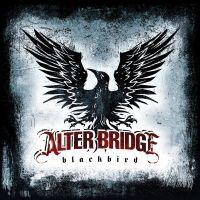 Cover Alter Bridge - Blackbird