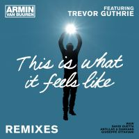 Cover Armin van Buuren feat. Trevor Guthrie - This Is What It Feels Like