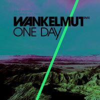 Cover Asaf Avidan - One Day / Reckoning Song (Wankelmut Rmx)