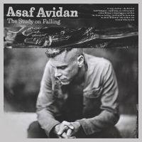 Cover Asaf Avidan - The Study On Falling