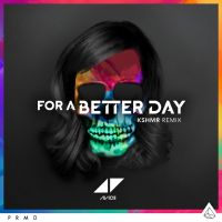 Cover Avicii - For A Better Day