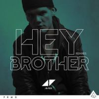 Cover Avicii - Hey Brother