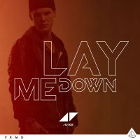 Cover Avicii - Lay Me Down