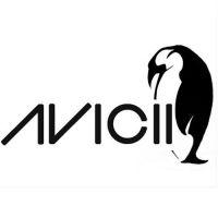 Cover Avicii - Penguin