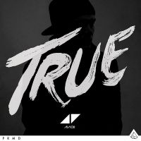 Cover Avicii - True