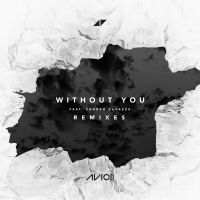 Cover Avicii feat. Sandro Cavazza - Without You