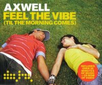 Cover Axwell - Feel The Vibe