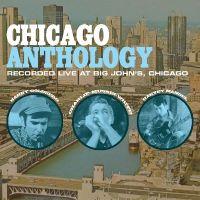 Cover Barry Goldberg / Charlie Musselwhite / Harvey Mandel - Chicago Anthology