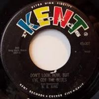 Cover B.B. King - Don't Look Now, But I've Got The Blues