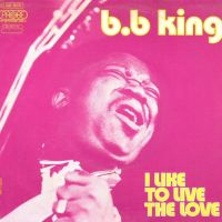 Cover B.B. King - I Like To Live The Love