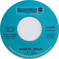 Cover B.B. King - Worried Dream