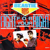 Cover Beastie Boys - Fight For Your Right