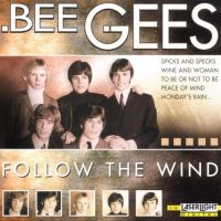 Cover Bee Gees - Follow The Wind