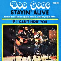 Cover Bee Gees - Stayin' Alive