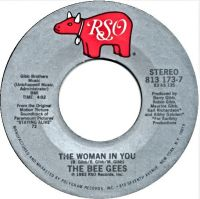 Cover Bee Gees - The Woman In You