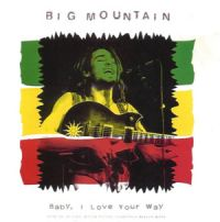 Cover Big Mountain - Baby, I Love Your Way
