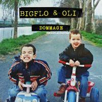 Cover Bigflo & Oli - Dommage