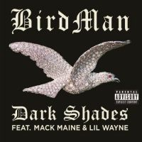 Cover Birdman feat. Mack Maine & Lil Wayne - Dark Shades