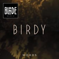 Cover Birdy - Words