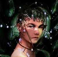Cover Björk - Bachelorette