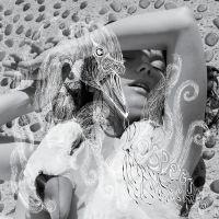 Cover Björk - Vespertine