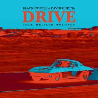 Cover Black Coffee & David Guetta feat. Delilah Montagu - Drive
