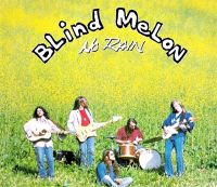 Cover Blind Melon - No Rain