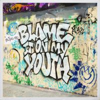 Cover Blink-182 - Blame It On My Youth