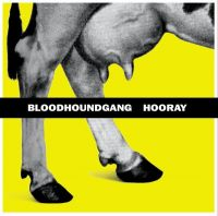 Cover Bloodhound Gang - Hooray For Boobies