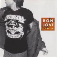 Cover Bon Jovi - It's My Life