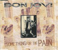 Cover Bon Jovi - Something For The Pain