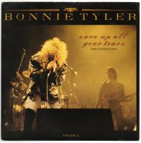 Cover Bonnie Tyler - Save Up All Your Tears