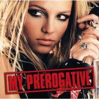 Cover Britney Spears - My Prerogative