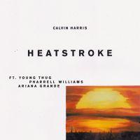 Cover Calvin Harris feat. Young Thug, Pharrell Williams & Ariana Grande - Heatstroke