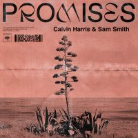 Cover Calvin Harris & Sam Smith - Promises