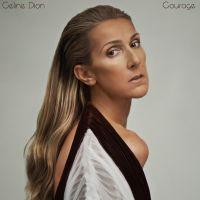 Cover Céline Dion - Courage