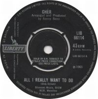 Cover Cher - All I Really Want To Do