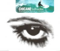 Cover Chicane feat. Maire Brennan - Saltwater