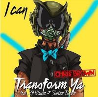 Cover Chris Brown feat. Lil Wayne & Swizz Beatz - I Can Transform Ya